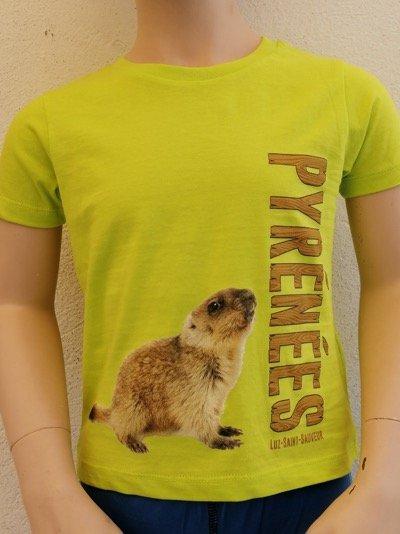 Kids Marmotte T-Shirt Yellow
